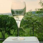 Pine Plains Wine