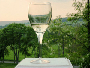Pine Plains Wine